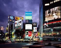 Япония. Токио. Экскурсионный тур. Распродажа пакетных туров в Токио. Перелет включен