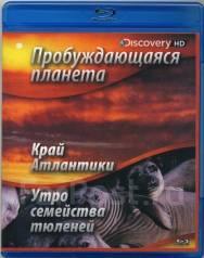 Пробуждающаяся планета: Край Атлантики/Утро семейства тюленей (Blu-ray)