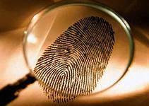 Частный детектив (сыщик)