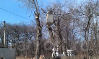 Пилим деревья-профессионально/ утилизация обрезков