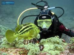 """Обучение дайвингу в Находке. Центр подводного плавания """"AquaMax""""."""