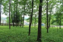 Сказочный участокток в дубнике с. Многоудобное, 35 соток. 3 500 кв.м., собственность, электричество, от частного лица (собственник). Фото участка