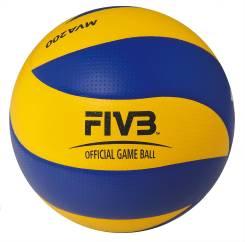Мячи волейбольные.