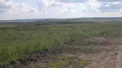 Продается земля 10 га Красный Яр. 100 000 кв.м., собственность, от частного лица (собственник)