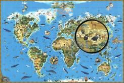 Глобусы и карты.