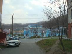 3-комнатная, Владивостокская ул. Ленинской, агентство, 70 кв.м. Вид из окна днём