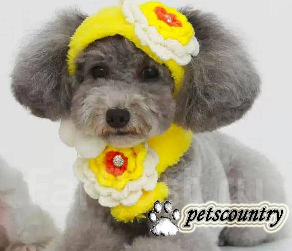 Очаровательные шапка+ шарф для собаки/ кошки. 2 Цвета! р-р: XS, S, M