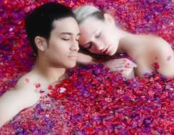 Специальное предложение для влюбленных с 50 % скидкой от спа Мята. Акция длится до 31 октября