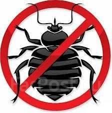 Уничтожение насекомых. Без Запаха. Тараканов. Клопов. Крыс. Гарантия