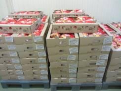 Оптовая продажа замороженного мяса со склада