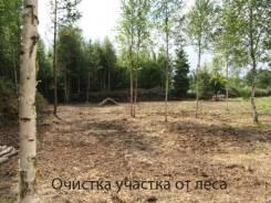 Спилим деревья бесплатно. Владивосток Артем Надеждинск.