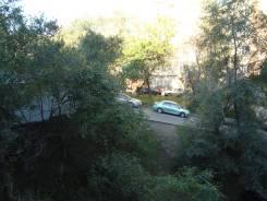 Гостинка, улица Корнилова 11. Столетие, частное лицо, 14 кв.м. Вид из окна днем
