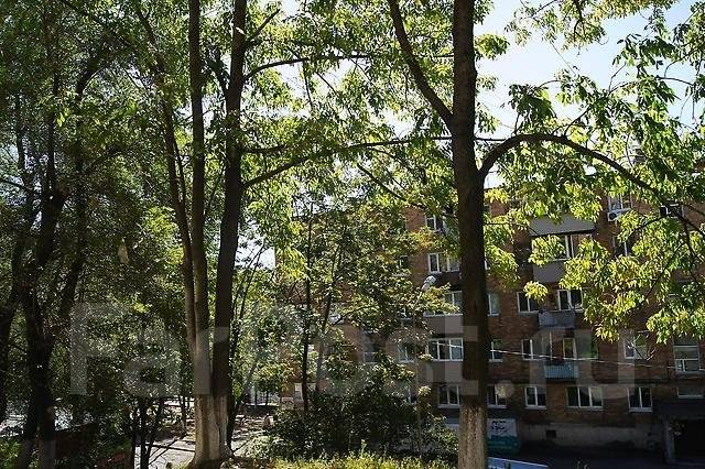 Офисные помещения. 150кв.м., улица Адмирала Юмашева 12б, р-н Баляева. Вид из окна