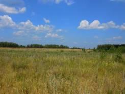 Продам участок земли, граничащий с Лазовским заповедником. 35 740 кв.м., собственность, электричество, вода, от частного лица (собственник). Документ...