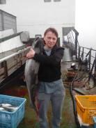 Рыбообработчик. Среднее образование, опыт работы 7 месяцев
