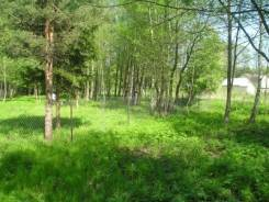 Земля в д. Растовцы 90 км. по Дмитровсокму шоссе. Лес, водоем рядом. 900 кв.м., собственность, электричество, вода, от частного лица (собственник)