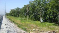Продается земля на Де-Фризе у федеральной трассы. 7 451 кв.м., собственность, от агентства недвижимости (посредник). Фото участка