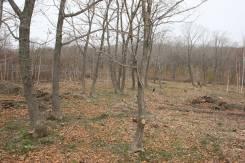 Земельный участок в посёлке Девятый Вал Надеждинского района. 3 000 кв.м., собственность, электричество, от частного лица (собственник). Фото участка