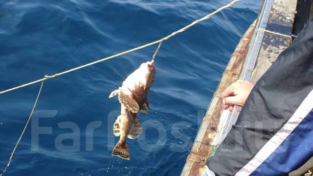 """Катер """"Охотник"""" Дайв сафари. Рыбалка. Отдых на островах!. 25 человек"""