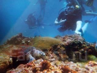 Ак Обслуживание и чистка аквариумов.999Аквадизайн. Установка аквариума.