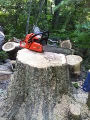Спилить дерево. Срубить, вырубить деревья. Вырубка, спил. обрезка веток