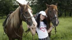 Конные маршруты для всех. Конные прогулки, конные походы. Кедровая роща