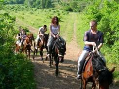 Конные прогулки по лесу и побережью в черте города Находка