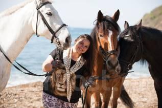 Предлогаем конные прогулки на Орловских Рысаках по побережью моря
