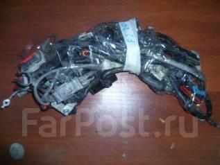 Проводка двс. Ford Focus, CB4 Двигатели: AODB, AODA