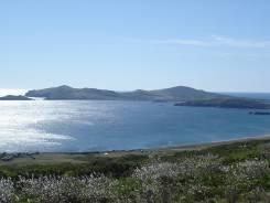 Приглашаю в Тур выходного дня на остров Попова Максимум морского