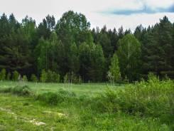 Продам земельный участок. 1 181кв.м., собственность, электричество