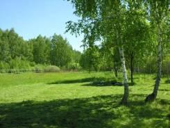 Земельный участок 20000 рублей сотка. Лес, река, электричество. 2 200 кв.м., собственность, электричество, вода, от агентства недвижимости (посредник...