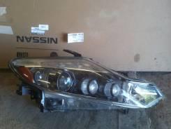 Фара. Nissan Murano, TZ51, PNZ51, Z51, TNZ51 Двигатели: QR25DE, VQ35DE