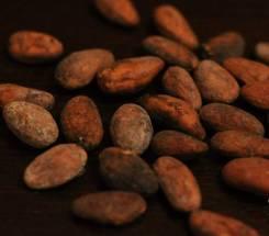 Какао-бобы.