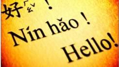 Репетиторы по иностранным языкам.
