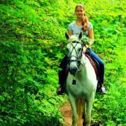 """Конная прогулка """"Знакомство с лошадью"""". 600 р. Р-н Ботанического сада"""