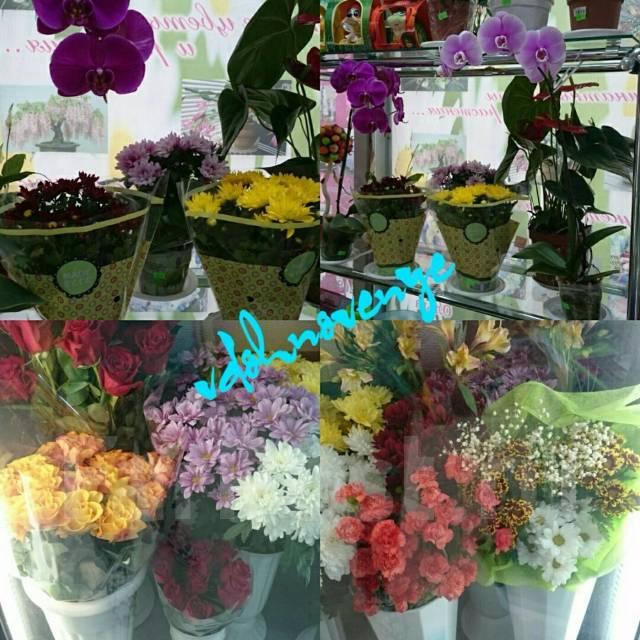 Цветы шары подарки, доставка