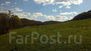 Продам 5 га земли в Анисимовке. 50 000 кв.м., аренда, от частного лица (собственник)