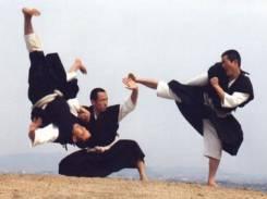 Японское единоборство Сёриндзи Кэмпо: взрослые; дети 6-14 лет