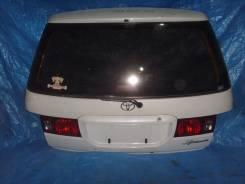 Дверь багажника. Toyota Ipsum, SXM10