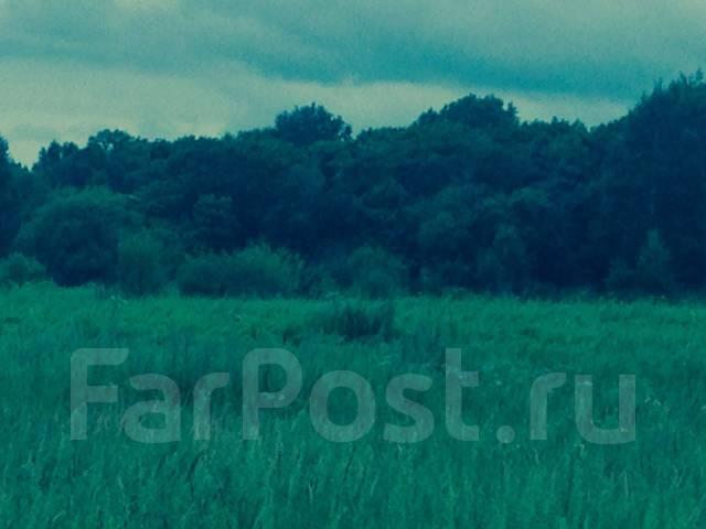 ИЖС, с. Прохладное. 10 034 кв.м., собственность, электричество, от частного лица (собственник). Фото участка