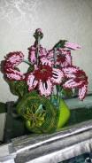 Цветы и флористика.