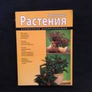 Комнатные растения (мел)