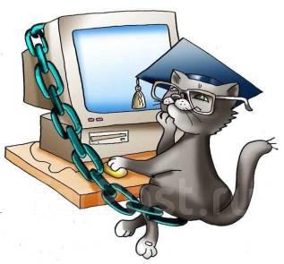Контрольные курсовые и дипломные работы по Юриспруденции Помощь  Юриспруденция социальная работа педагогика логопедия дипломные