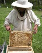 Пчеловод. Частная пасека. С. Кутузовка