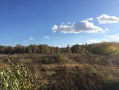 Земля ИЖС 12 соток на берегу оз. Сугояк. 12 000кв.м., собственность, электричество. Фото участка