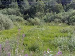 Продам земельный участок, в живописном месте Рузского района, М. О. 900 кв.м., собственность, электричество, от частного лица (собственник)