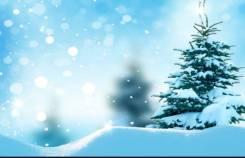 Вывоз и уборка снега. Услуги спецтехники