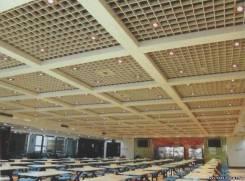 Потолок Грильято Подвесной потолок Ячеистый потолок