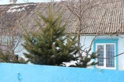 Продаётся дом в экологически чистом районе. С. Ясное, ул. Краснодонская 20, р-н с. Ясное, площадь дома 47 кв.м., скважина, электричество 15 кВт, отоп...